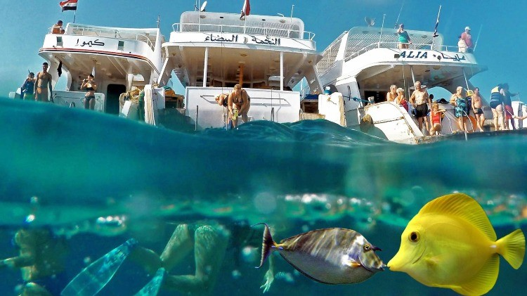 Hurghada Sea Trip