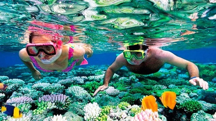 Hurghada Snorkeling